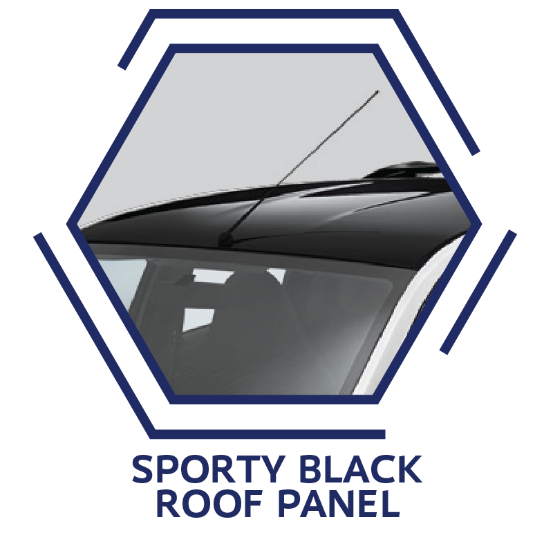Sporty Black Roof Panel